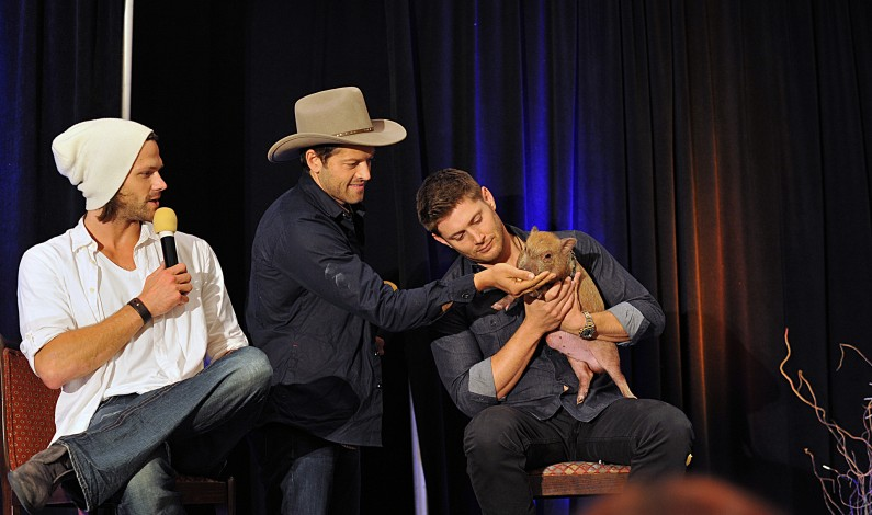 'Supernatural' Stars Use Fame and Fandoms to Give Back [Video]